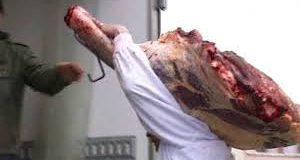 Une carcasse de génisse saisie par les éléments de la sûreté de wilaya de S.B.A
