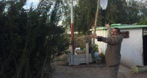 Communiqué de l'action citoyenne: «un arbre pour chaque martyr».