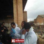 Le Ministre de l'Agriculture, du Développement Rural et de la Pêche, en visite à  Sidi Bel Abbés,
