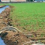 Irrigation des surfaces cultivables au menu de la vulgarisation